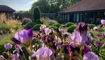 The Dairy open for NGS 19 June 2021